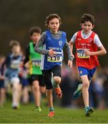 25 November 2018; Oisin Langford of Waterford A.C. Co. Waterford, competing in the Boys U12 2,000m during the Irish Life Health National Senior & Junior Cross Country Championships at National Sports Campus in Abbottstown, Dublin. Photo by Harry Murphy/Sportsfile