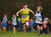 25 November 2018; Sean Cummins of Boyne A.C. Co. Louth, competing in the Boys U12 2,000m during the Irish Life Health National Senior & Junior Cross Country Championships at National Sports Campus in Abbottstown, Dublin. Photo by Harry Murphy/Sportsfile