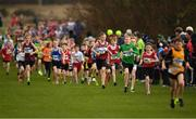 25 November 2018; A general view during the Boys U12 2,000m during the Irish Life Health National Senior & Junior Cross Country Championships at National Sports Campus in Abbottstown, Dublin. Photo by Harry Murphy/Sportsfile