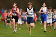 25 November 2018; Dylan Ryan of Dunboyne A.C. Co. Dublin, centre, competing in the Boys U12 2,000m during the Irish Life Health National Senior & Junior Cross Country Championships at National Sports Campus in Abbottstown, Dublin. Photo by Harry Murphy/Sportsfile