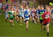 25 November 2018; Kevin Duffy of Claremorris A.C. Co. Mayo, centre, competing in the Boys U12 2,000m during the Irish Life Health National Senior & Junior Cross Country Championships at National Sports Campus in Abbottstown, Dublin. Photo by Harry Murphy/Sportsfile