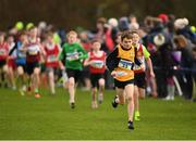 25 November 2018; Noah Harris of Ashford AC Co. Wicklow, competing in the Boys U12 2,000m during the Irish Life Health National Senior & Junior Cross Country Championships at National Sports Campus in Abbottstown, Dublin. Photo by Harry Murphy/Sportsfile