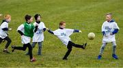2 December 2018; Members of the Philadelphia GAA Club during a Coaching Session as part of the PwC All Stars Football tour at Philadelphia GAA Club in Limerick Field, Longview Rd, Pottstown, Philadelphia, PA, USA. Photo by Ray McManus/Sportsfile