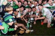 2 December 2018; Ballyhale Shamrocks players celebrate with the cup after the AIB Leinster GAA Hurling Senior Club Championship Final match Ballyboden St Enda's and Ballyhale Shamrocks at Netwatch Cullen Park in Carlow. Photo by Piaras Ó Mídheach/Sportsfile