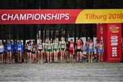 9 December 2018; A general view of the Ireland team at the start line competing in the U20 Women's event during the European Cross Country Previews at Beekse Bergen Safari Park in Tilburg, Netherlands. Photo by Sam Barnes/Sportsfile