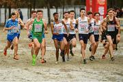 9 December 2018; Ryan Forsyth, left, of Ireland competing in the U23 Men's event during the European Cross Country Championships at Beekse Bergen Safari Park in Tilburg, Netherlands. Photo by Sam Barnes/Sportsfile