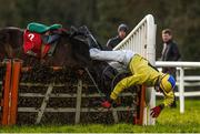25 January 2018; Daniel Holden falls from his mount Glen's Dd at the last during the Ladbrokes Handicap Hurdle at the Gowran Park Races in Gowran Park, Co Kilkenny. Photo by Matt Browne/Sportsfile