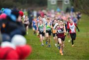 15 December 2018; Ryan Jenkins of Mullingar Harriers AC Westmeath competing in the boys U13 2500m race during the Irish Life Health Novice & Juvenile Uneven Age Cross Country Championships 2018 at Navan Adventure Sports, Navan Racecourse in Meath. Photo by Eóin Noonan/Sportsfile