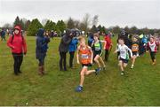 15 December 2018; Ben Walsh of Nenagh Olympic A.C., Co. Tipperary, competing in the U13 Boys event during the Irish Life Health Novice & Juvenile Uneven Age Cross Country Championships 2018 at Navan Adventure Sports, Navan Racecourse in Meath. Photo by Eóin Noonan/Sportsfile