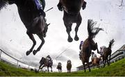 29 December 2018; Runners and riders jump the last on their first time round during the Adare Manor Opportunity Handicap Steeplechase during day four of the Leopardstown Festival at Leopardstown Racecourse in Dublin. Photo by David Fitzgerald/Sportsfile