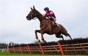 29 December 2018; Tombstone, with Davy Russell up, jump the last during the Ryanair Hurdle during day four of the Leopardstown Festival at Leopardstown Racecourse in Dublin. Photo by David Fitzgerald/Sportsfile