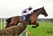 6 January 2019; Articulum, with David Mullins up, jumps the second on their way to winning the Irish Stallion Farms EBF Novice Steeplechase at Naas Racecourse in Kildare. Photo by Seb Daly/Sportsfile