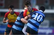 8 January 2019; Niall O'Halloran of St Fintan's High School is tackled by Finn Tierney, left, and Joel Caetano Faria of Newpark Comprehensive School during the Bank of Ireland Vinnie Murray Cup Round 1 match between Newpark Comprehensive and St Fintan's High School at Energia Park in Dublin. Photo by David Fitzgerald/Sportsfile