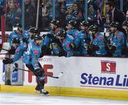 13 January 2019; Dustin Johner of Belfast Giants celebrates after scoring his side's second goal during the IIHF Continental Cup Final match between Arlan Kokshetau and Stena Line Belfast Giants at the SSE Arena in Belfast, Co. Antrim. Photo by Eoin Smith/Sportsfile