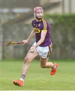 13 January 2019; Paudie Foley of Wexford during the Bord na Mona Walsh Cup semi-final match between Wexford and Kilkenny at Bellefield in Wexford. Photo by Matt Browne/Sportsfile