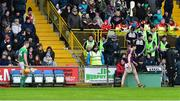 27 January 2019; Liam Ryan of Wexford and Seamus Flanagan of Limerick make their way back to the stand after being sent off by referee Fergal Horgan during the Allianz Hurling League Division 1A Round 1 match between Wexford and Limerick at Innovate Wexford Park in Wexford. Photo by Matt Browne/Sportsfile