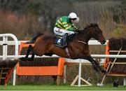 3 February 2019; Sir Erec, with Mark Walsh up, jumps the last on their way to winning the Tattersalls Ireland Spring Juvenile Hurdle during Day Two of the Dublin Racing Festival at Leopardstown Racecourse in Dublin. Photo by Seb Daly/Sportsfile