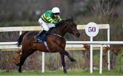 3 February 2019; Sir Erec, with Mark Walsh up, on their way to winning the Tattersalls Ireland Spring Juvenile Hurdle during Day Two of the Dublin Racing Festival at Leopardstown Racecourse in Dublin. Photo by Ramsey Cardy/Sportsfile