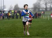 3 February 2019; Jack McGrath of Midleton AC, Co. Cork, on his way to winning the U12 boys 4x500m relay during the Irish Life Health National Intermediate, Master, Juvenile B & Relays Cross Country at Dundalk IT in Dundalk, Co. Louth Photo by Harry Murphy/Sportsfile
