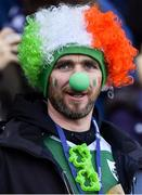 9 February 2019; An Ireland supporter during the Guinness Six Nations Rugby Championship match between Scotland and Ireland at the BT Murrayfield Stadium in Edinburgh, Scotland. Photo by Brendan Moran/Sportsfile