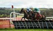 10 February 2019; Sinoria, with Rachel Blackmore, up, left, jumps the last next to eventual second place finisher Chosen Mate, with Davy Russell, up, on their way to winning the I.N.H. Stallion Owners EBF Novice Hurdle at Punchestown Racecourse in Naas, Co. Kildare. Photo by David Fitzgerald/Sportsfile