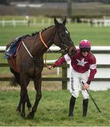 10 February 2019; Monatomic, with Jack Kennedy, up, after falling at the last during Richard Maher Memorial Rated Novice Steeplechase at Punchestown Racecourse in Naas, Co. Kildare. Photo by David Fitzgerald/Sportsfile