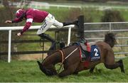 10 February 2019; Monatomic, with Jack Kennedy, up, fall at the last during Richard Maher Memorial Rated Novice Steeplechase at Punchestown Racecourse in Naas, Co. Kildare. Photo by David Fitzgerald/Sportsfile