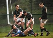 10 February 2019; Rory O'Connor, below, of Ireland celebrates with team mates after scoring his side's fourth try during the Irish Universities Rugby Union match between Ireland and Scotland at Queens University in Belfast, Antrim. The Maxol Ireland's Students took on their Scottish counterparts in the annual International Colours match at Queen's University Belfast today. Ireland were victorious with a hard fought 31- 03 win against the visitors. This is Maxol's 27th year of IURU sponsorship, one of the longest and most enduring rugby sponsorships in Ireland at Queens University in Belfast, Antrim. Photo by Oliver McVeigh/Sportsfile