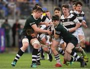13 February 2019; John Meagher of Belvedere College is tackled by Mark Moynihan of Newbridge College during the Bank of Ireland Leinster Schools Senior Cup Round 2 match between Belvedere College and Newbridge College at Energia Park in Donnybrook, Dublin.  Photo by Eóin Noonan/Sportsfile