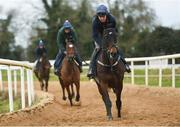 19 February 2019; Apples Jade, with Keith Donoghue up, during a Gordon Elliott yard visit at Gordon Elliott Racing in Longwood, Co Meath. Photo by Harry Murphy/Sportsfile