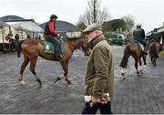 20 February 2019; Trainer Willie Mullins pictured during a visit to Willie Mullins' yard at Willie Mullins Racing in Bagenalstown, Carlow. Photo by Matt Browne/Sportsfile