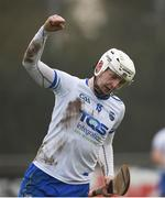 24 February 2019; Shane Bennett of Waterford celebrates after scoring his side's third goal during the Allianz Hurling League Division 1B Round 4 match between Dublin and Waterford at Parnell Park in Donnycarney, Dublin. Photo by Daire Brennan/Sportsfile