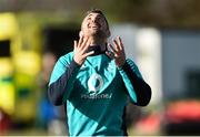 1 March 2019; Rob Kearney during Ireland Rugby squad open training session at Queen's University in Belfast, Antrim. Photo by Oliver McVeigh/Sportsfile
