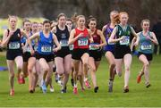 9 March 2019; Sarah Healy of Holy Child Killiney, Dublin, number 378, on her way to winning the Senior Girls event during the Irish Life Health All Ireland Schools Cross Country at Clongowes Wood College in Clane, Co Kildare. Photo by Piaras Ó Mídheach/Sportsfile