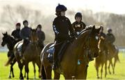 11 March 2019; Tiger Roll, with Lisa O'Neill up, on the gallops ahead of the Cheltenham Racing Festival at Prestbury Park in Cheltenham, England. Photo by Seb Daly/Sportsfile