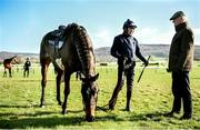 11 March 2019; Jockey Ruby Walsh talks to trainer Willie Mullins with horse Benie Des Dieux on the gallops ahead of the Cheltenham Racing Festival at Prestbury Park in Cheltenham, England. Photo by David Fitzgerald/Sportsfile