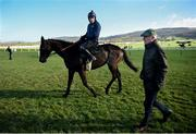 11 March 2019; Willie Mullins walks alongside horse Benie Des Dieux with jockey Ruby Walsh on the gallops ahead of the Cheltenham Racing Festival at Prestbury Park in Cheltenham, England. Photo by David Fitzgerald/Sportsfile