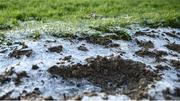 11 March 2019; A view of the icy ground ahead of the Cheltenham Racing Festival at Prestbury Park in Cheltenham, England. Photo by David Fitzgerald/Sportsfile
