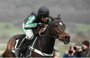 13 March 2019; Altior, with Nico de Boinville up, on their way to winning the Betway Queen Mother Champion Chase on Day Two of the Cheltenham Racing Festival at Prestbury Park in Cheltenham, England. Photo by Seb Daly/Sportsfile