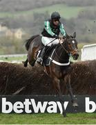 13 March 2019; Altior, with Nico de Boinville up, jumps the last on their way to winning the Betway Queen Mother Champion Chase on Day Two of the Cheltenham Racing Festival at Prestbury Park in Cheltenham, England. Photo by Seb Daly/Sportsfile