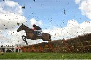 14 March 2019; Culture De Sivola, with Lizzie Kelly up, jumps the last during the Pertemps Network Final Handicap Hurdle on Day Three of the Cheltenham Racing Festival at Prestbury Park in Cheltenham, England. Photo by David Fitzgerald/Sportsfile