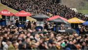 15 March 2019; A view of the crowd on Day Four of the Cheltenham Racing Festival at Prestbury Park in Cheltenham, England. Photo by David Fitzgerald/Sportsfile