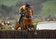 15 March 2019; Croco Bay, with Kielan Woods up, jumps the last on their way to winning the Johnny Henderson Grand Annual Challenge Cup Handicap Chase on Day Four of the Cheltenham Racing Festival at Prestbury Park in Cheltenham, England. Photo by Seb Daly/Sportsfile