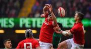 16 March 2019; Adam Beard of Wales jumps for the ball with Jacob Stockdale of Ireland during the Guinness Six Nations Rugby Championship match between Wales and Ireland at the Principality Stadium in Cardiff, Wales. Photo by Brendan Moran/Sportsfile