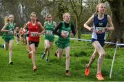 23 March 2019; Athletes, from left, Catherine Martin of Down High School, Co.Down, Ireland, Ceri Griffiths of Bassaleg School, Newport ,Wales, Neasa NiAinifein of Gaelcholaiste  an Chlair, Co.Clare, Ireland, Aoife McNerney of Maynooth Post Primary, Co.Kildare, Ireland and Katie Christie of Larbert High School, Stenhousemuir, Scotland, competing in the Junior Girls event   during the SIAB Schools Cross Country International at Santry Demense in Santry, Dublin. Photo by Sam Barnes/Sportsfile