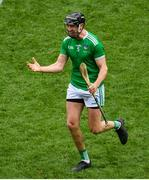 31 March 2019; Diarmaid Byrnes of Limerick celebrates following the Allianz Hurling League Division 1 Final match between Limerick and Waterford at Croke Park in Dublin. Photo by Ramsey Cardy/Sportsfile