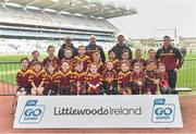 13 April 2019; Éire Óg Corra Choill Hurling Club Co Kildare pictured at the Littlewoods Ireland Go Games Provincial Days in Croke Park. This year over 6,000 boys and girls aged between six and twelve represented their clubs in a series of mini blitzes and just like their heroes got to play in Croke Park. Photo by Matt Browne/Sportsfile