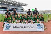 14 April 2019; The Clonkill, Co Westmeath, team at the Littlewoods Ireland Go Games Provincial Days in Croke Park. This year over 6,000 boys and girls aged between six and twelve represented their clubs in a series of mini blitzes and just like their heroes got to play in Croke Park. Photo by Piaras Ó Mídheach/Sportsfile