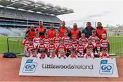 14 April 2019; The Cappagh, Co Kildare, team at the Littlewoods Ireland Go Games Provincial Days in Croke Park. This year over 6,000 boys and girls aged between six and twelve represented their clubs in a series of mini blitzes and just like their heroes got to play in Croke Park. Photo by Piaras Ó Mídheach/Sportsfile
