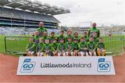 14 April 2019; The Rathgarogue Cushinstown, Co Wexford, team at the Littlewoods Ireland Go Games Provincial Days in Croke Park. This year over 6,000 boys and girls aged between six and twelve represented their clubs in a series of mini blitzes and just like their heroes got to play in Croke Park. Photo by Piaras Ó Mídheach/Sportsfile